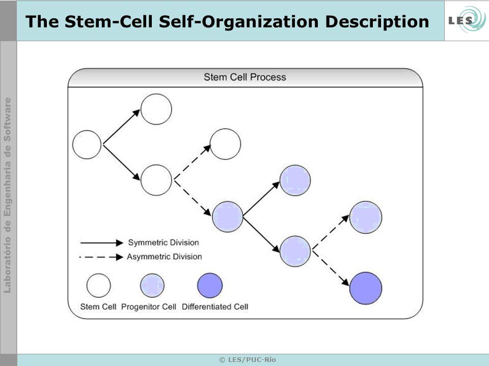 © LES/PUC-Rio The Stem-Cell Self-Organization Description