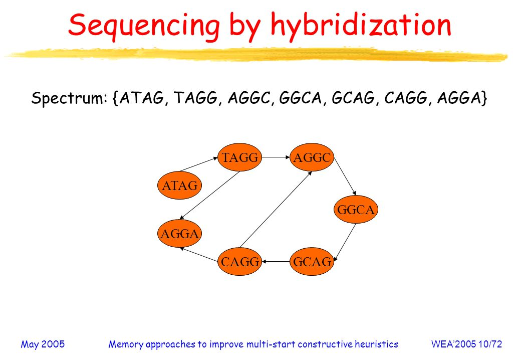 May 2005Memory approaches to improve multi-start constructive heuristicsWEA /72 Sequencing by hybridization Spectrum: {ATAG, TAGG, AGGC, GGCA, GCAG, CAGG, AGGA} AGGA CAGG AGGC GCAG ATAG GGCA TAGG