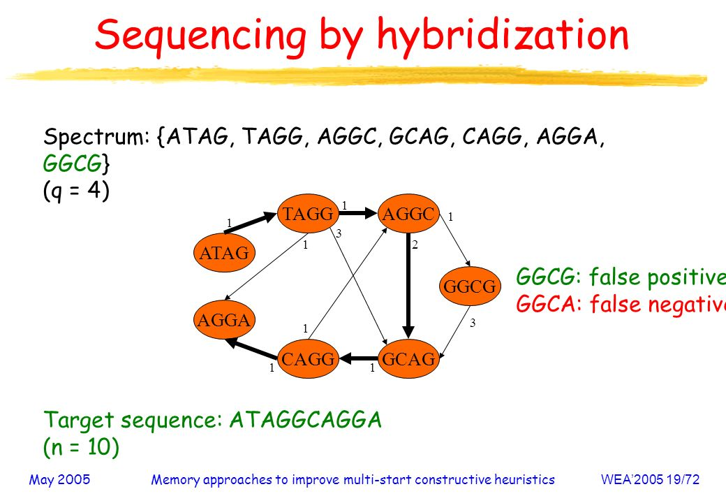 May 2005Memory approaches to improve multi-start constructive heuristicsWEA /72 Sequencing by hybridization Spectrum: {ATAG, TAGG, AGGC, GCAG, CAGG, AGGA, GGCG} (q = 4) AGGA CAGG AGGC GCAG ATAG GGCG TAGG Target sequence: ATAGGCAGGA (n = 10) GGCG: false positive GGCA: false negative