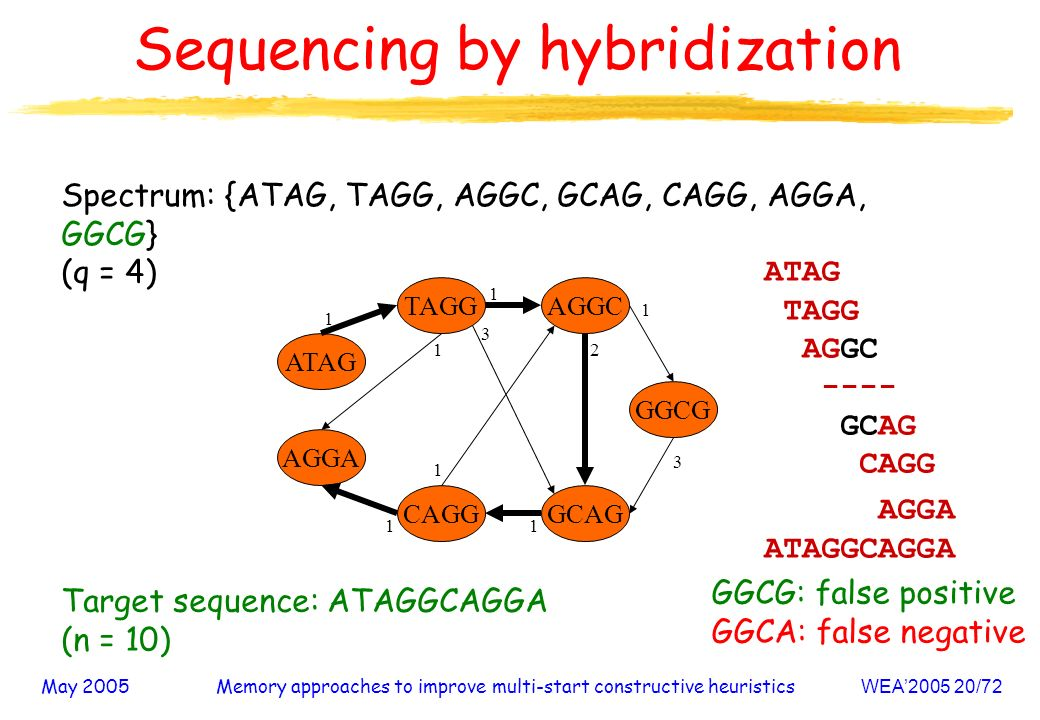 May 2005Memory approaches to improve multi-start constructive heuristicsWEA /72 Sequencing by hybridization Spectrum: {ATAG, TAGG, AGGC, GCAG, CAGG, AGGA, GGCG} (q = 4) AGGA CAGG AGGC GCAG ATAG GGCG TAGG Target sequence: ATAGGCAGGA (n = 10) GGCG: false positive GGCA: false negative ATAG TAGG AGGC ---- GCAG CAGG AGGA ATAGGCAGGA