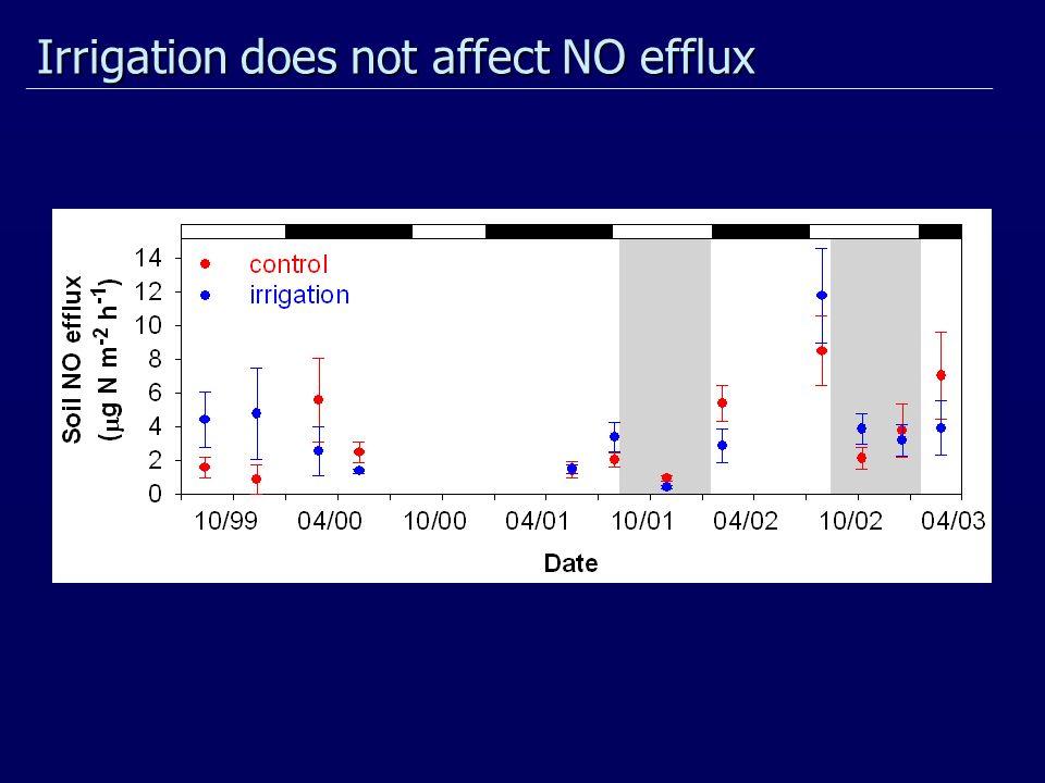 Irrigation does not affect NO efflux