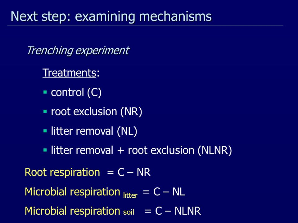 Next step: examining mechanisms Treatments: control (C) root exclusion (NR) litter removal (NL) litter removal + root exclusion (NLNR) Root respiratio