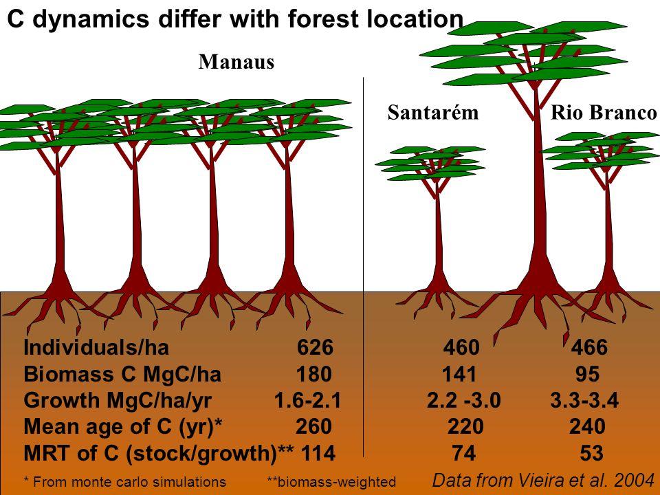 Manaus Santarém Rio Branco Individuals/ha 626 460 466 Biomass C MgC/ha 180 141 95 Growth MgC/ha/yr 1.6-2.1 2.2 -3.0 3.3-3.4 Mean age of C (yr)* 260 220 240 MRT of C (stock/growth)** 114 74 53 * From monte carlo simulations **biomass-weighted Data from Vieira et al.