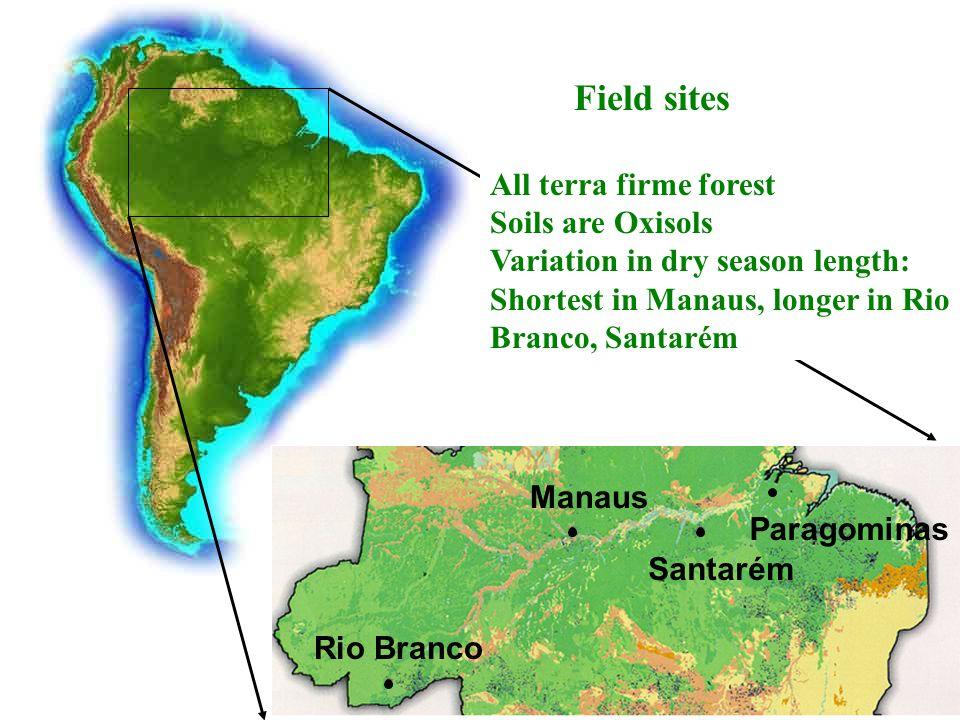 Rio Branco Manaus Santarém Field sites All terra firme forest Soils are Oxisols Variation in dry season length: Shortest in Manaus, longer in Rio Branco, Santarém Paragominas