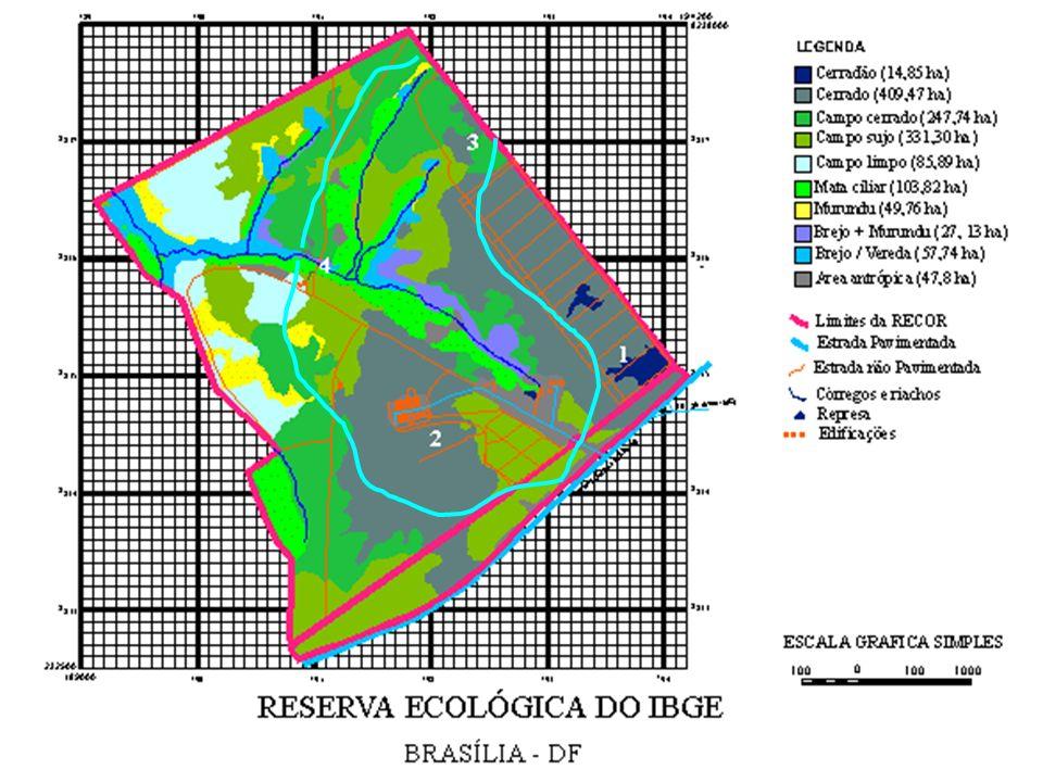 Streams (Igarapés): Cq = Igarapé Cinquenta e quatro St = Igarapé do Sete Pj = Igarapé Pajeú Study Area: Fazenda Vitoria, Paragominas, Para