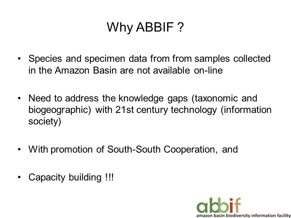 Why ABBIF .