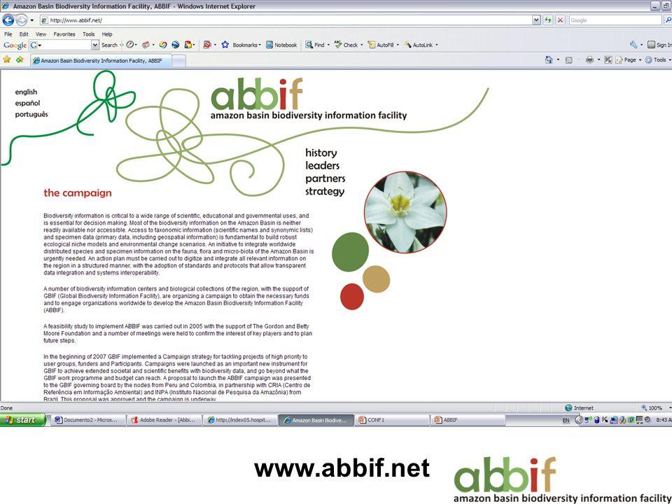 www.abbif.net