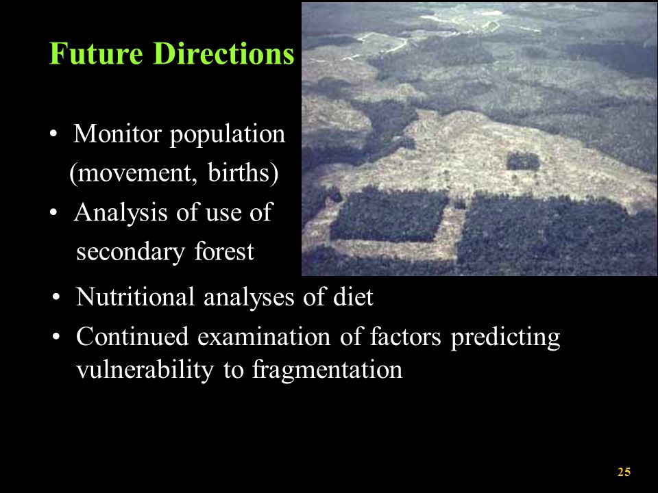 Future Directions Monitor population (movement, births) Analysis of use of secondary forest R. Bierregaard, Jr. Nutritional analyses of diet Continued