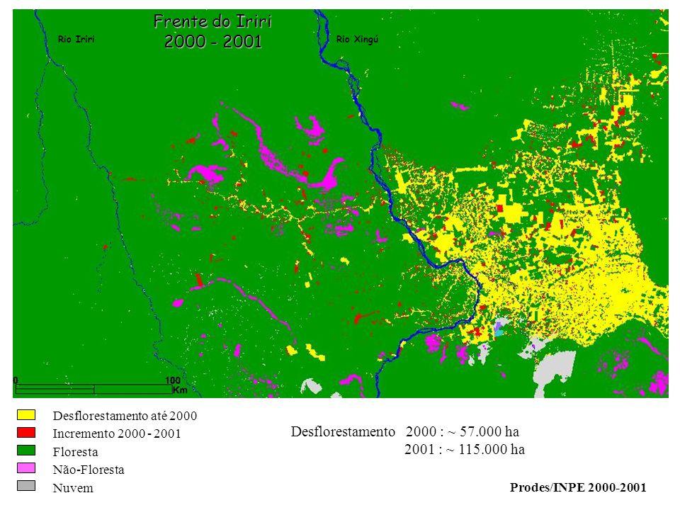 Rio IririRio Xingú Frente do Iriri 2000 - 2001 Desflorestamento 2000 : ~ 57.000 ha 2001 : ~ 115.000 ha Prodes/INPE 2000-2001 Desflorestamento até 2000