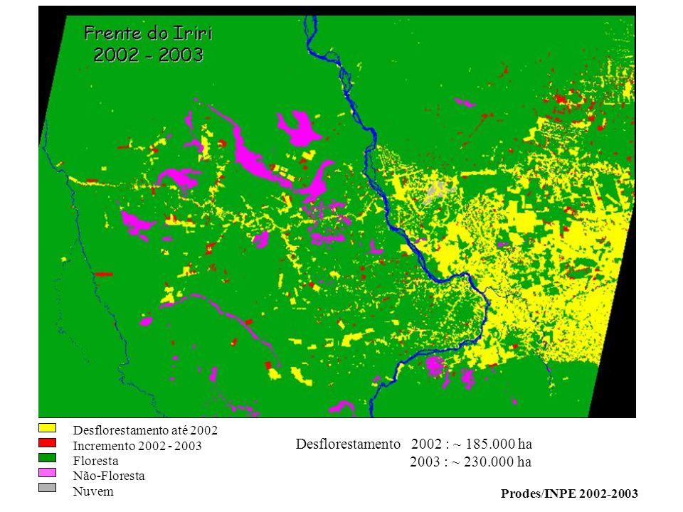 Desflorestamento 2002 : ~ 185.000 ha 2003 : ~ 230.000 ha Prodes/INPE 2002-2003 Desflorestamento até 2002 Incremento 2002 - 2003 Floresta Não-Floresta