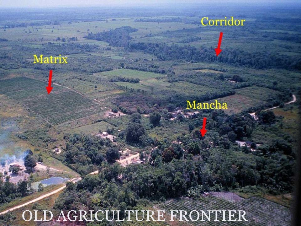 Matrix Mancha Corridor OLD AGRICULTURE FRONTIER