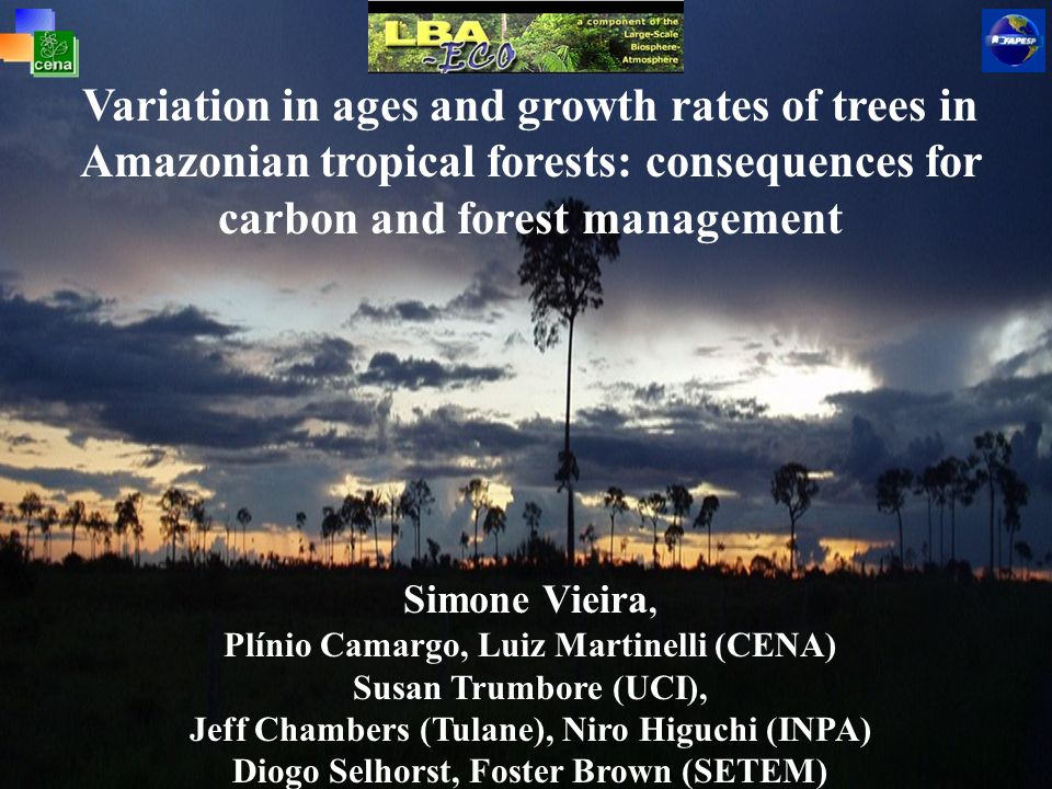 Variation in ages and growth rates of trees in Amazonian tropical forests: consequences for carbon and forest management Simone Vieira, Plínio Camargo, Luiz Martinelli (CENA) Susan Trumbore (UCI), Jeff Chambers (Tulane), Niro Higuchi (INPA) Diogo Selhorst, Foster Brown (SETEM)