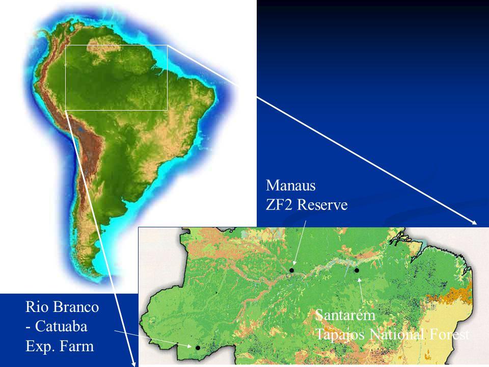 Rio Branco Manaus Santarém Field sites All terra firme forest Soils are Oxisols Variation in dry season length Shortest in Manaus, longer in Rio Branco, Santarém