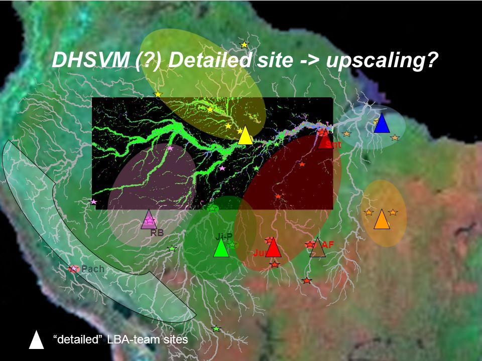 MAO Ji-P RB Jur Snt AF Pach DHSVM (?) Detailed site -> upscaling? detailed LBA-team sites