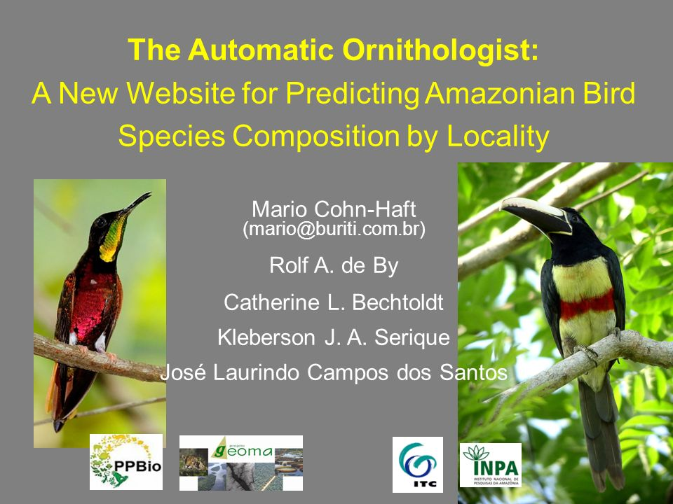 The Automatic Ornithologist: A New Website for Predicting Amazonian Bird Species Composition by Locality Mario Cohn-Haft (mario@buriti.com.br) Rolf A.