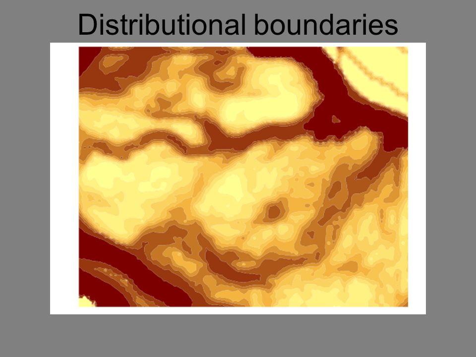 Distributional boundaries