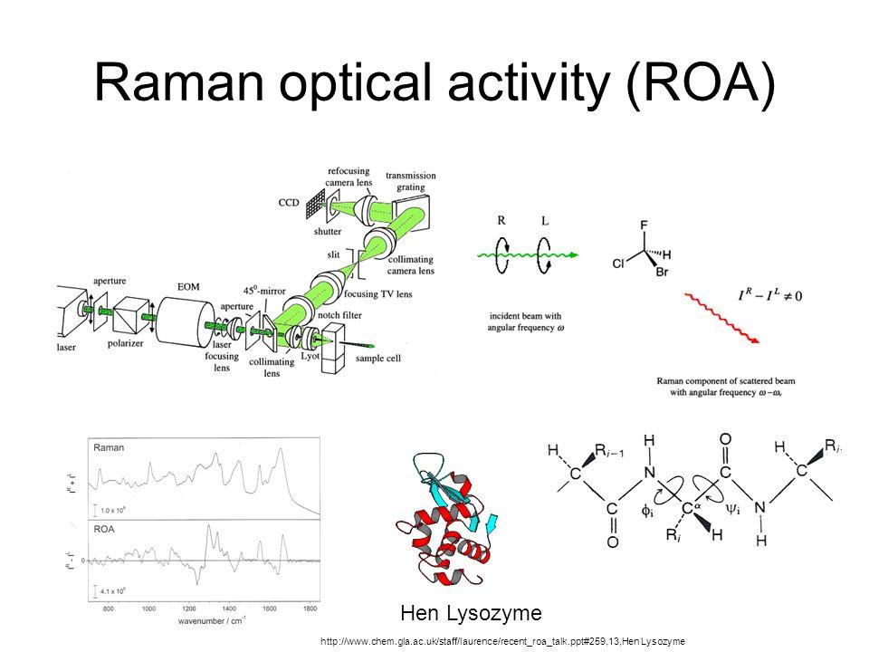 Raman optical activity (ROA) Hen Lysozyme http://www.chem.gla.ac.uk/staff/laurence/recent_roa_talk.ppt#259,13,Hen Lysozyme