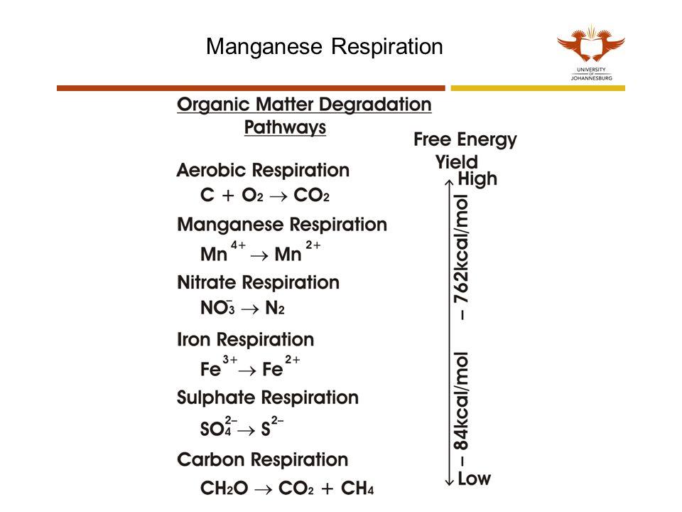 Manganese Respiration