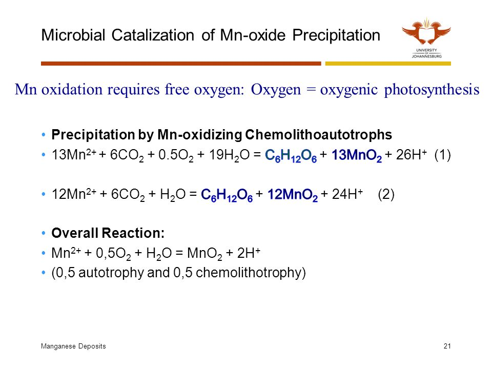 Microbial Catalization of Mn-oxide Precipitation Manganese Deposits21 Mn oxidation requires free oxygen: Oxygen = oxygenic photosynthesis