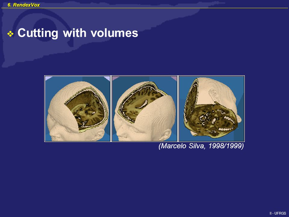 II - UFRGS (Marcelo Silva, 1998/1999) 6. RendexVox Cutting with volumes