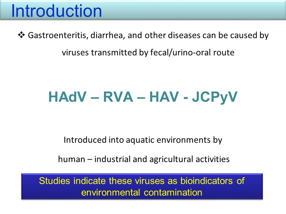 Gastroenteritis, diarrhea, and other diseases can be caused by viruses transmitted by fecal/urino-oral route HAdV – RVA – HAV - JCPyV Introduced into
