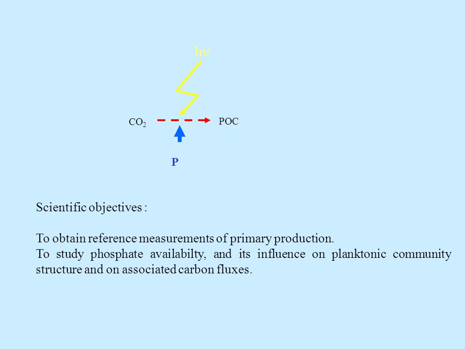 Scientific objectives : To obtain reference measurements of primary production.