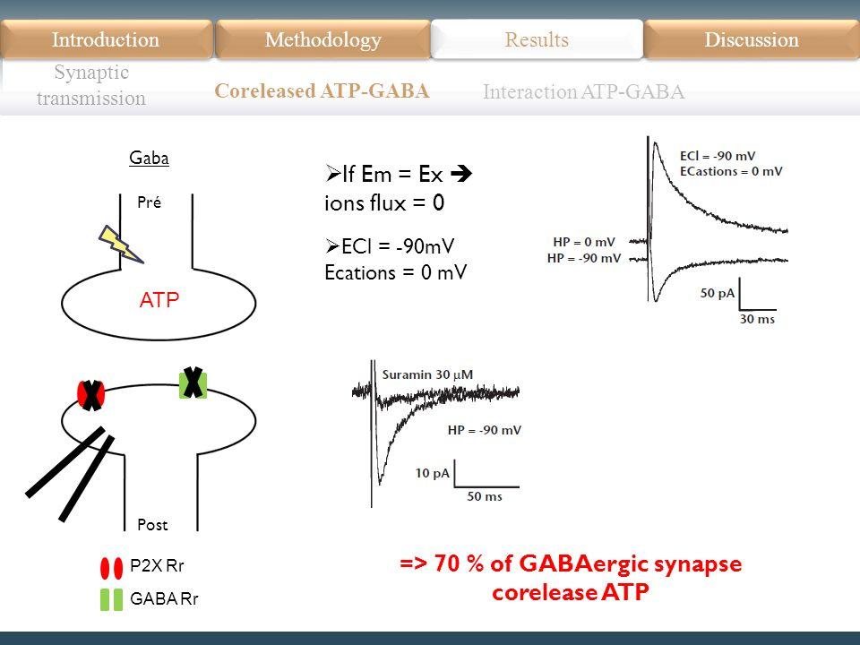 Introduction Méthodologie Modèle Données actuelles Résultats Discussion Résumé Introduction Methodology Synaptic transmission Results Discussion Coreleased ATP-GABA Pré Post Gaba ATP P2X Rr GABA Rr If Em = Ex ions flux = 0 => 70 % of GABAergic synapse corelease ATP ECl = -90mV Ecations = 0 mV Interaction ATP-GABA
