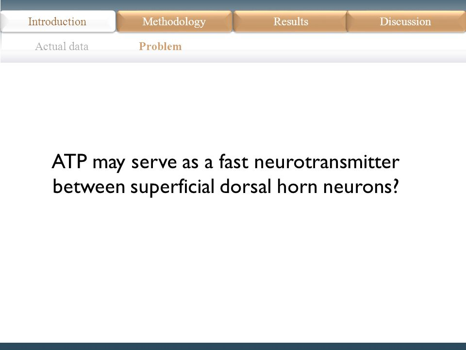 Actual data Problem Introduction Methodology Results Discussion ATP may serve as a fast neurotransmitter between superficial dorsal horn neurons?