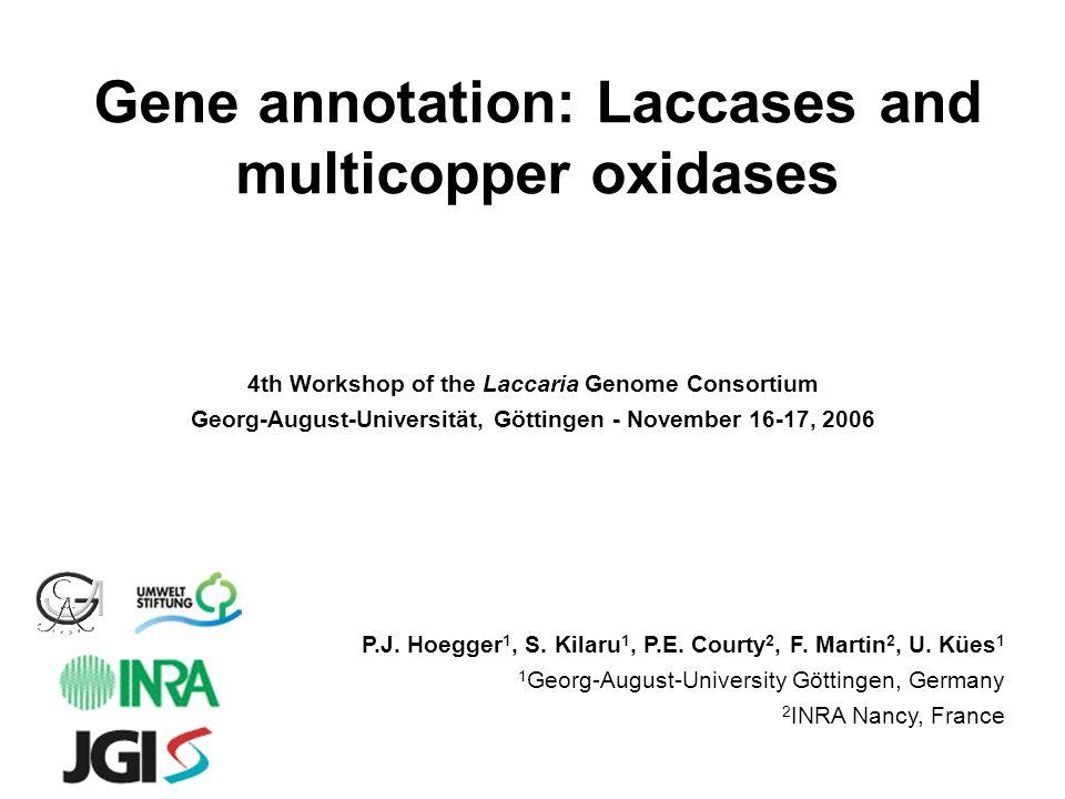 Gene annotation: Laccases and multicopper oxidases P.J. Hoegger 1, S. Kilaru 1, P.E. Courty 2, F. Martin 2, U. Kües 1 1 Georg-August-University Göttin