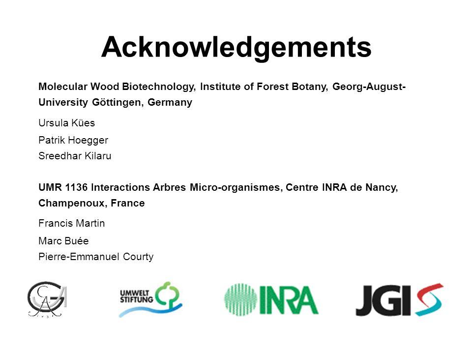 Acknowledgements Molecular Wood Biotechnology, Institute of Forest Botany, Georg-August- University Göttingen, Germany Ursula Kües Patrik Hoegger Sree