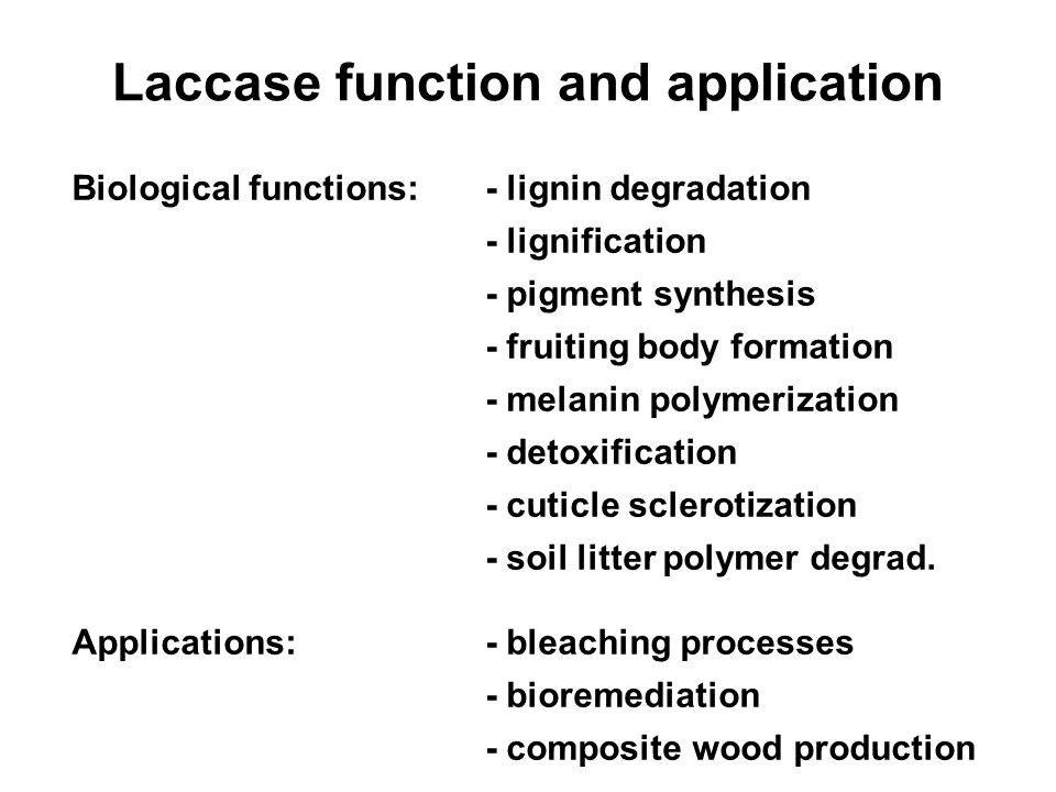 Laccase function and application Biological functions:- lignin degradation - lignification - pigment synthesis - fruiting body formation - melanin pol