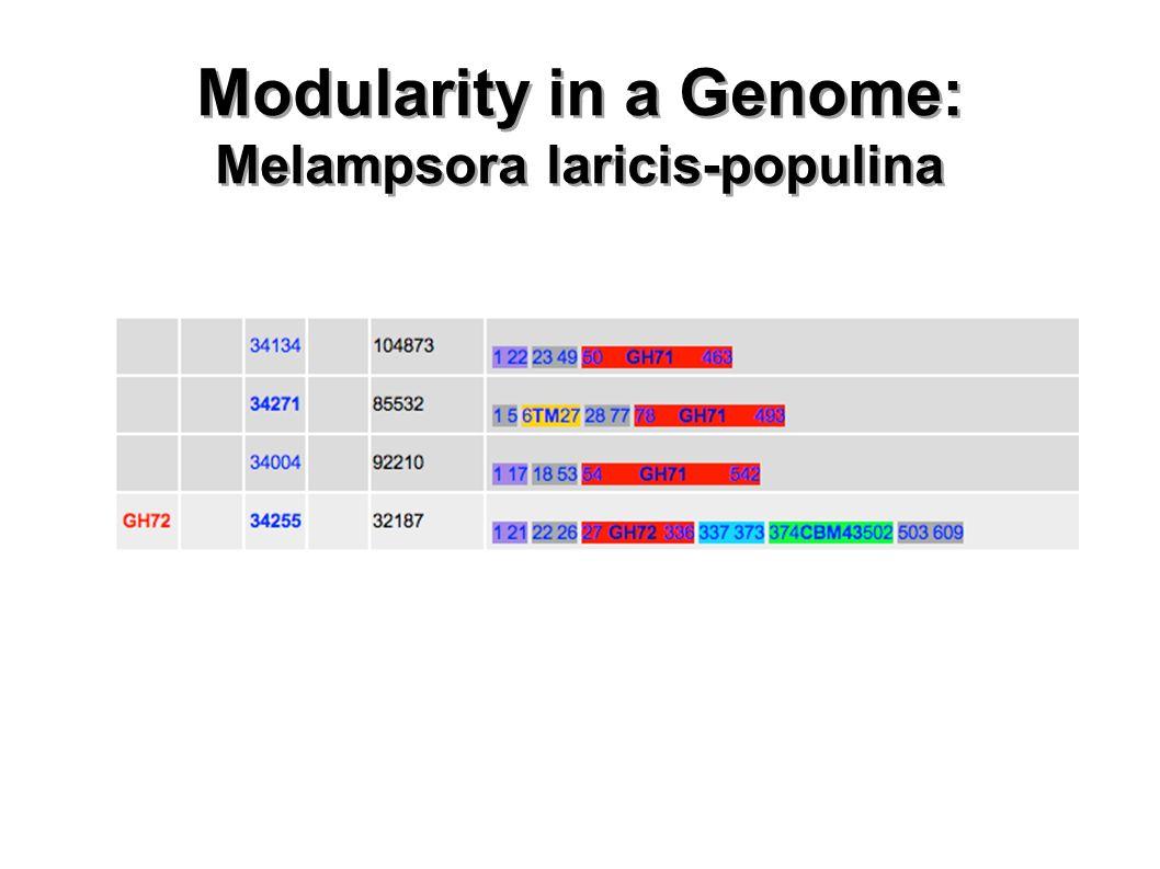 Modularity in a Genome: Melampsora laricis-populina