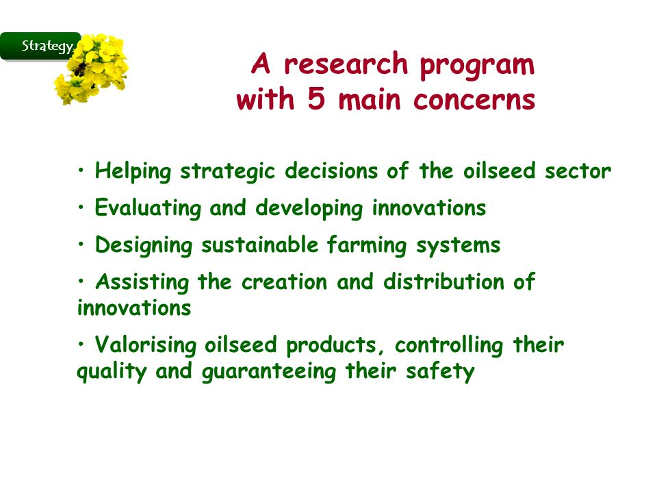 Strategy A research program with 5 main concerns Helping strategic decisions of the oilseed sector Evaluating and developing innovations Designing sustainable farming systems Assisting the creation and distribution of innovations Valorising oilseed products, controlling their quality and guaranteeing their safety
