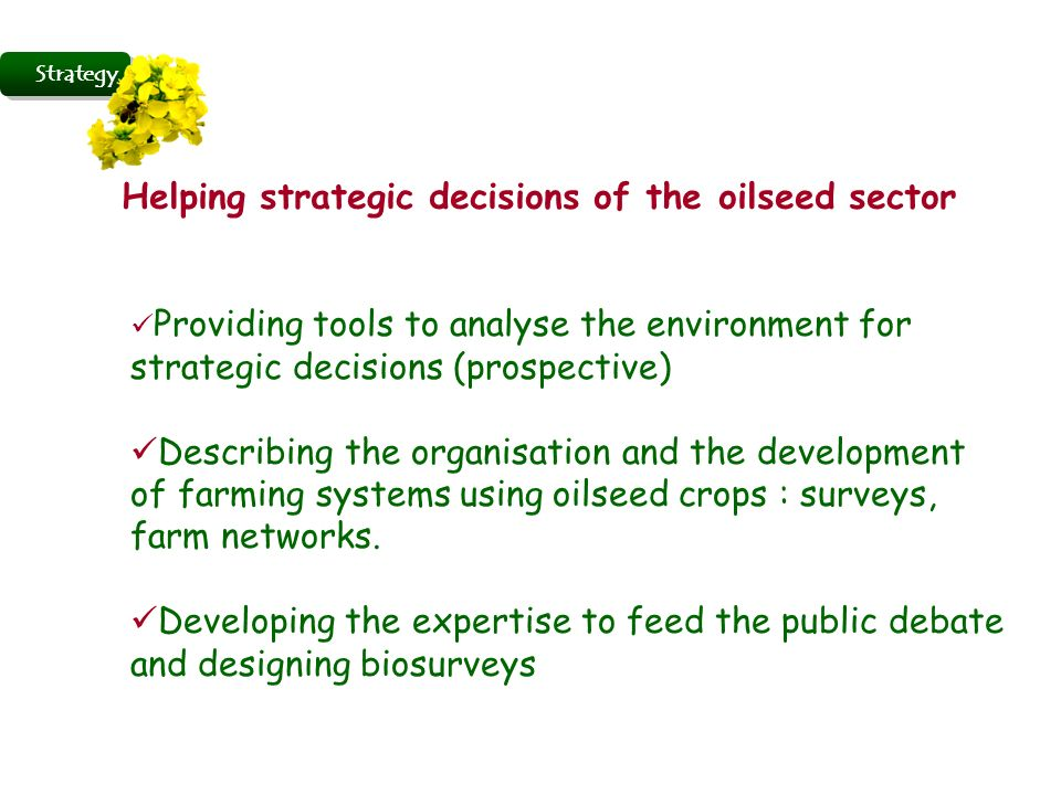 Strategy Helping strategic decisions of the oilseed sector Providing tools to analyse the environment for strategic decisions (prospective) Describing the organisation and the development of farming systems using oilseed crops : surveys, farm networks.