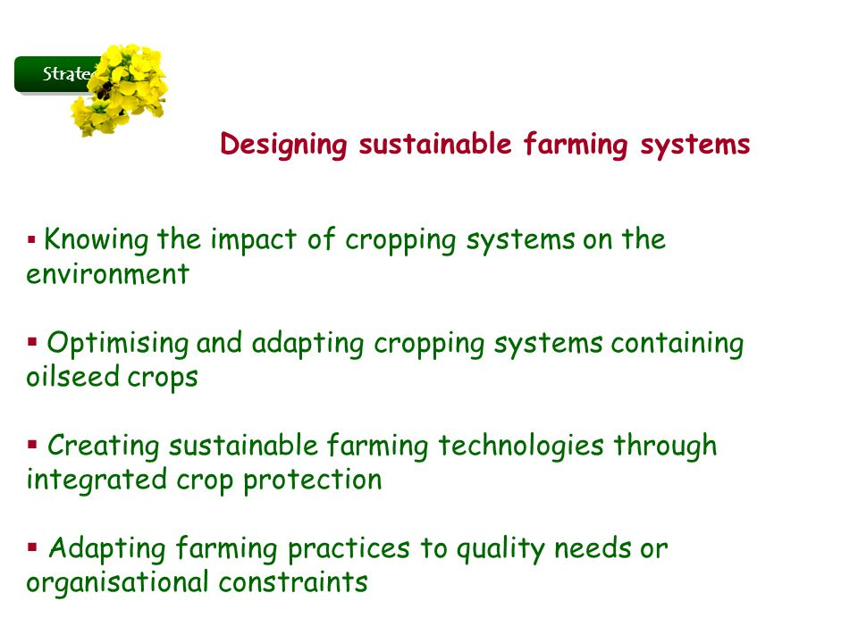 Strategy Designing sustainable farming systems Knowing the impact of cropping systems on the environment Optimising and adapting cropping systems cont