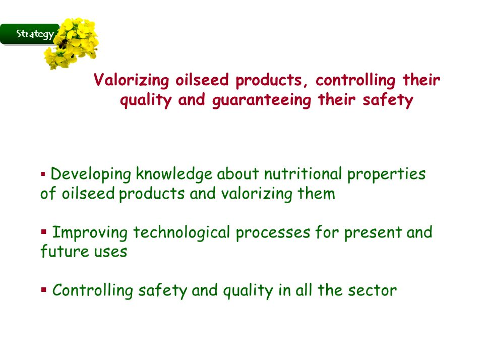 Valorizing oilseed products, controlling their quality and guaranteeing their safety Developing knowledge about nutritional properties of oilseed products and valorizing them Improving technological processes for present and future uses Controlling safety and quality in all the sector Strategy