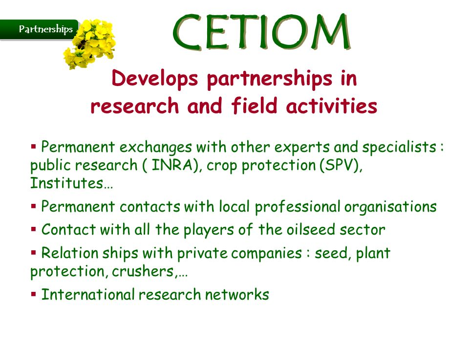 Develops partnerships in research and field activities Permanent exchanges with other experts and specialists : public research ( INRA), crop protection (SPV), Institutes… Permanent contacts with local professional organisations Contact with all the players of the oilseed sector Relation ships with private companies : seed, plant protection, crushers,… International research networks Partnerships CETIOM