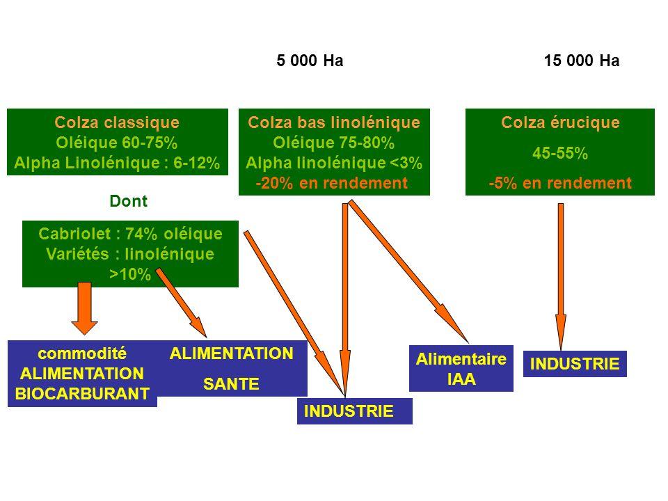 Colza classique Oléique 60-75% Alpha Linolénique : 6-12% Colza bas linolénique Oléique 75-80% Alpha linolénique <3% -20% en rendement Colza érucique 45-55% -5% en rendement Dont Cabriolet : 74% oléique Variétés : linolénique >10% commodité ALIMENTATION BIOCARBURANT ALIMENTATION SANTE INDUSTRIE Alimentaire IAA INDUSTRIE 5 000 Ha15 000 Ha