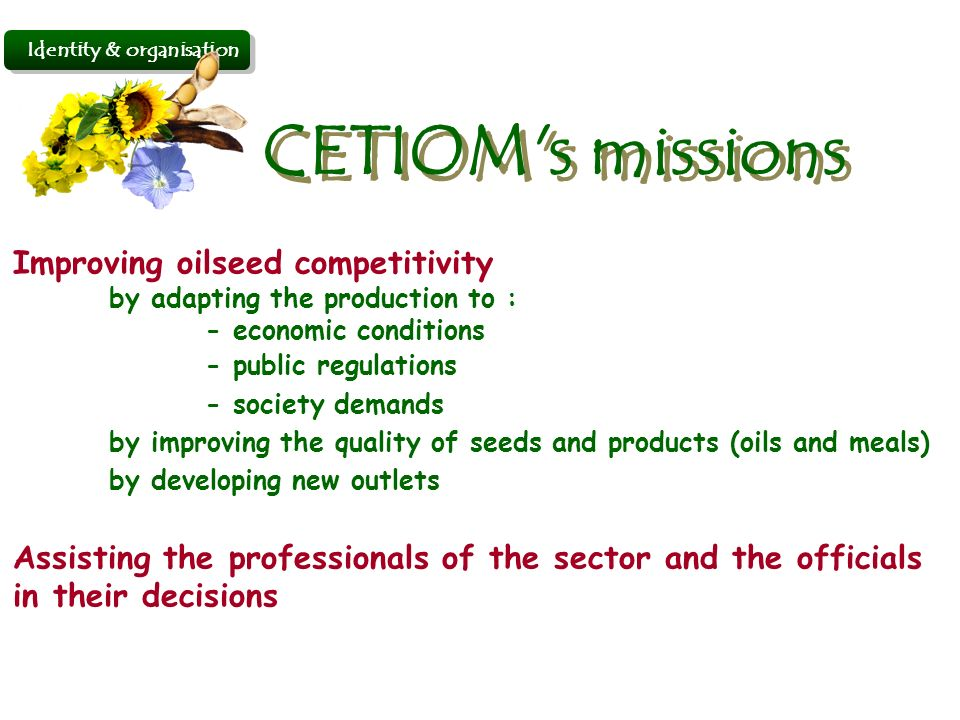 Identity & organisation Improving oilseed competitivity by adapting the production to : - economic conditions - public regulations - society demands by improving the quality of seeds and products (oils and meals) by developing new outlets Assisting the professionals of the sector and the officials in their decisions CETIOM s missions