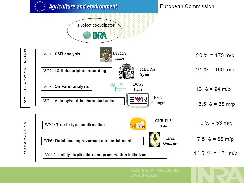 ALIMENTATION AGRICULTURE ENVIRONNEMENT European Commission Project coordinator DATAACQUSITIONDATAACQUSITION WP1 : SSR analysis WP2 : I & II descriptors recording WP3 : On-Farm analysis WP4 : Vitis sylvestris characterisation IASMA Italie IMIDRA Spain DOPI Italie EVN Portugal 20 % = 175 m/p 21 % = 160 m/p 15,5 % = 68 m/p 13 % = 94 m/p MANAGEMENTMANAGEMENT 14.5 % = 121 m/p WP5 : True-to-type confirmation WP6 : Database improvement and enrichment CNR-IVV Italie BAZ Germany 9 % = 53 m/p 7.5 % = 66 m/p WP 7 : safety duplication and preservation initiatives