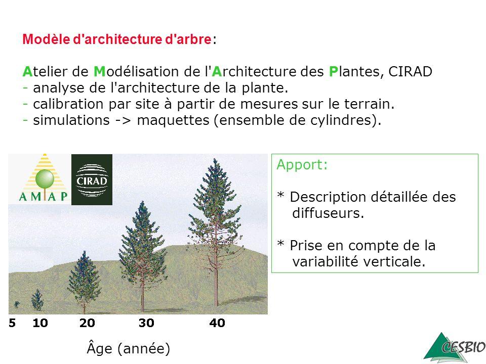 Âge (année) Modèle d'architecture d'arbre : Atelier de Modélisation de l'Architecture des Plantes, CIRAD - analyse de l'architecture de la plante. - c