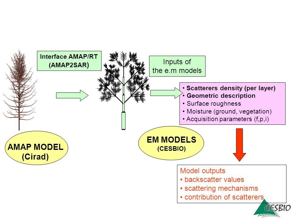AMAP MODEL (Cirad) Scatterers density (per layer) Geometric description Surface roughness Moisture (ground, vegetation) Acquisition parameters (f,p,i)