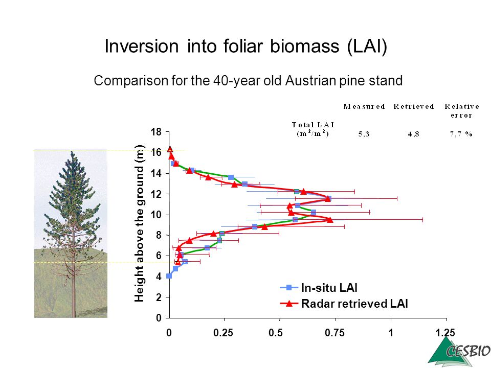 Inversion into foliar biomass (LAI) Comparison for the 40-year old Austrian pine stand 0 2 4 6 8 10 12 14 16 18 00.250.50.75 11.25 LAI (m²/m²) Height