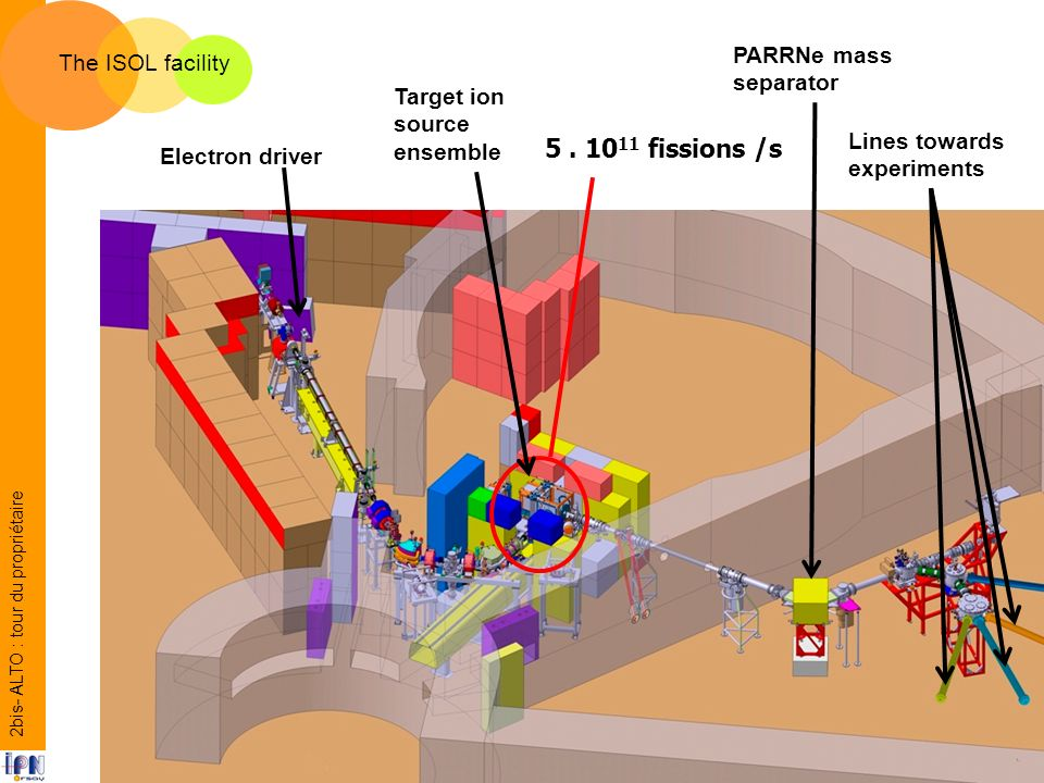 5. 10 11 fissions /s The ISOL facility Electron driver Target ion source ensemble PARRNe mass separator Lines towards experiments