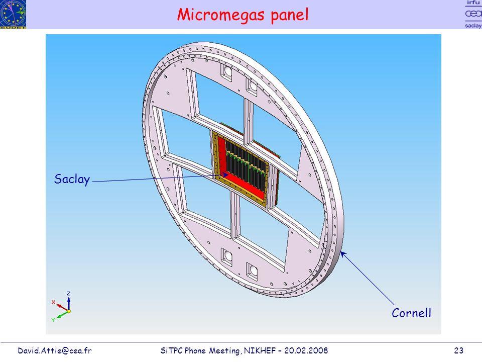 David.Attie@cea.frSiTPC Phone Meeting, NIKHEF – 20.02.200823 Micromegas panel Saclay Cornell