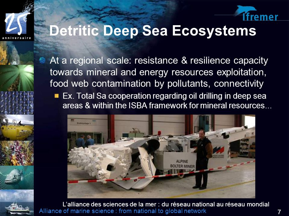 Lalliance des sciences de la mer : du réseau national au réseau mondial Alliance of marine science : from national to global network 7 Detritic Deep Sea Ecosystems At a regional scale: resistance & resilience capacity towards mineral and energy resources exploitation, food web contamination by pollutants, connectivity Ex.