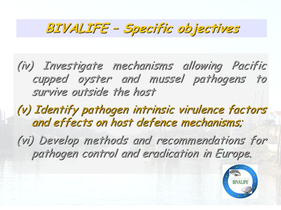 Présence relativement homogène des pathogènes identifiés BIVALIFE – Specific objectives (iv) Investigate mechanisms allowing Pacific cupped oyster and