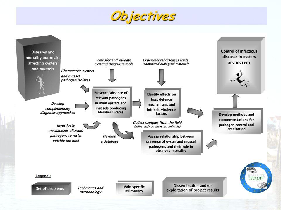 Présence relativement homogène des pathogènes identifiés Objectives