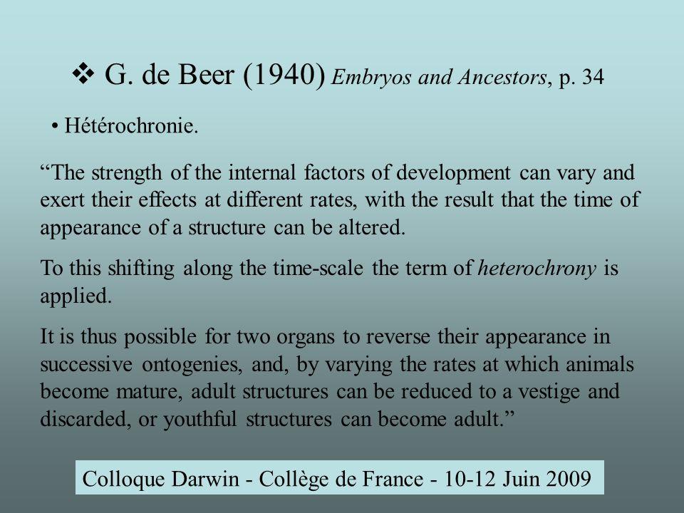 G. de Beer (1940) Embryos and Ancestors, p.