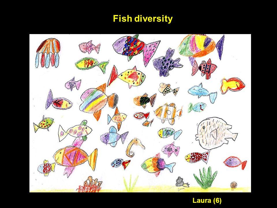 Fish diversity Laura (6)